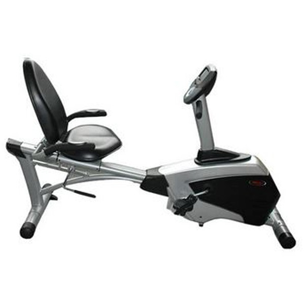 WNQ Recumbent Bike 7318WB