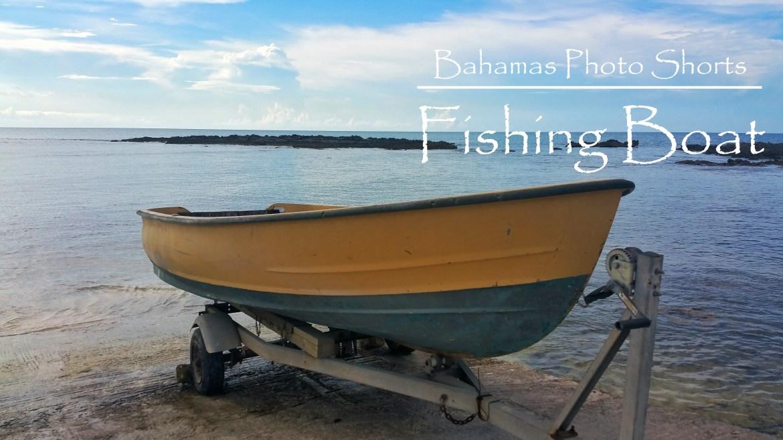 Bahamas Photo Shorts