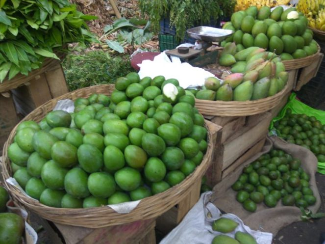 Varieties of raw mangoes available during this season