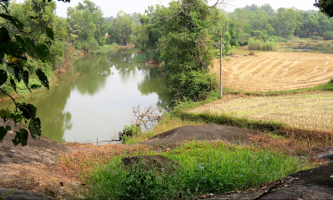 A small pond around the Kallu Ganapati temple