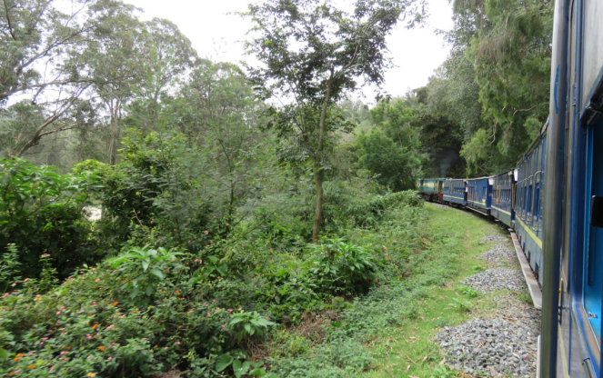 Toy train on the Nilgiri mountain railway