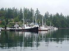 Working Boat, Deer harbor