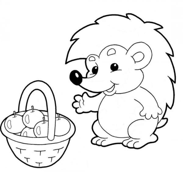 Ёжик, раскраски для детей, 100 штук. Распечатайте онлайн!