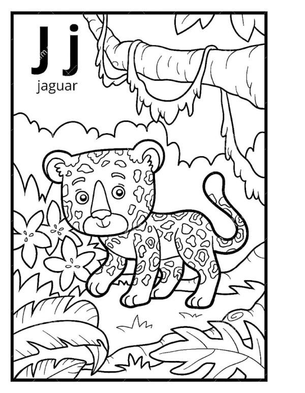 Раскраска джунгли скачать и распечатать