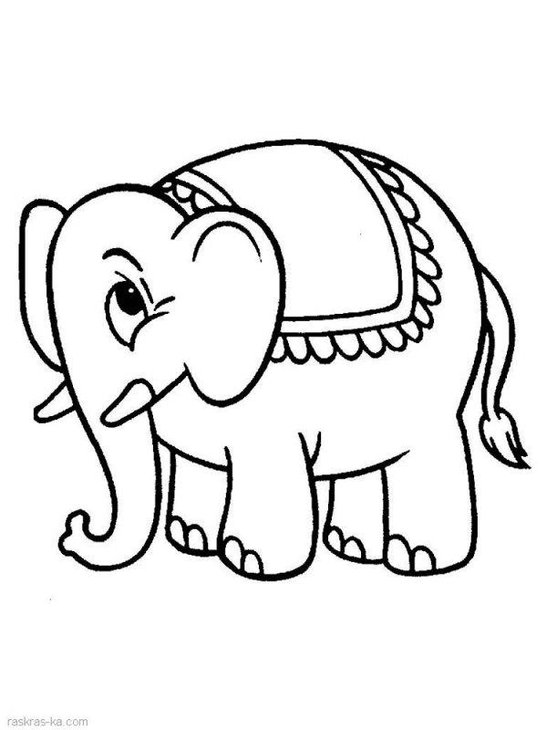 Раскраска слон скачать и распечатать