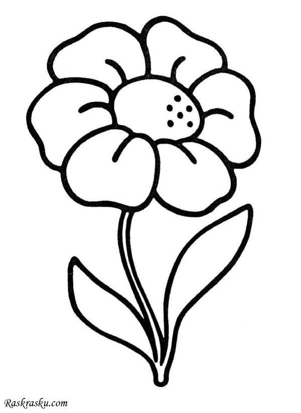 Цветок Картинка Раскраска