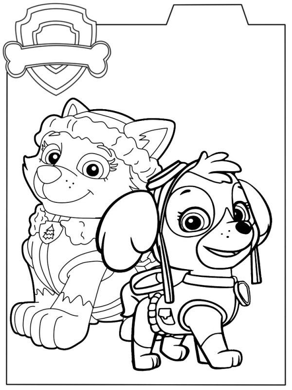 Онлайн раскраски с Щенячим патрулем для мальчиков и девочек