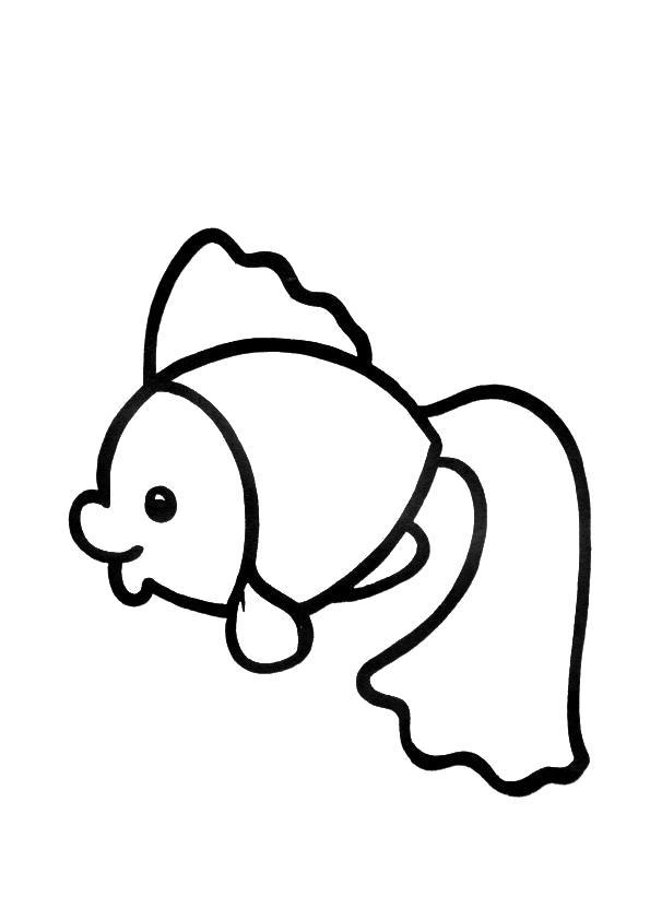 Раскраски рыба, Страница:5.