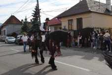 Festivalului Național Ecvestru 5