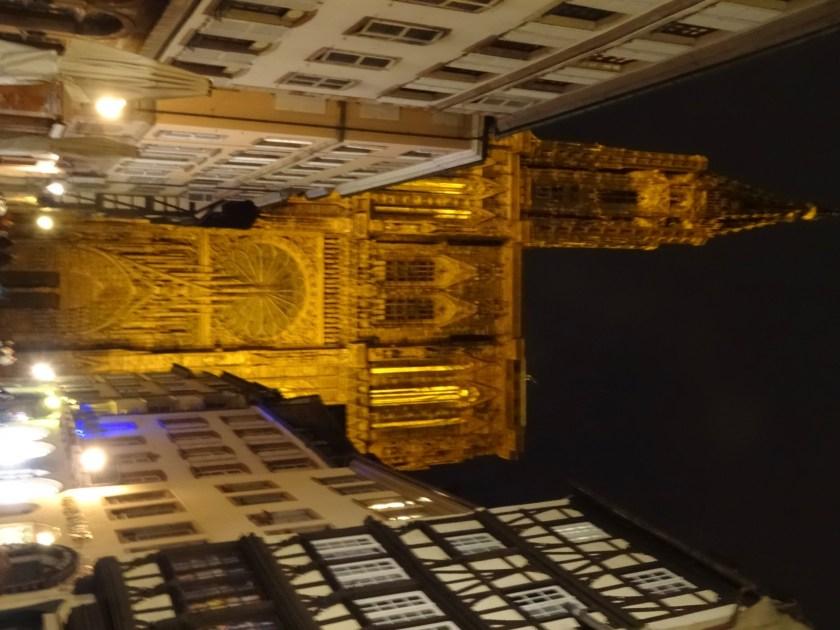 catedral Notre Dame de Strasbourg (28)