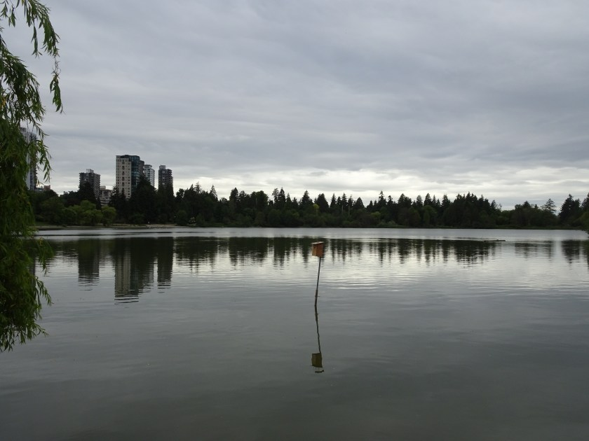vancouver stanley park lost lagoon (3)