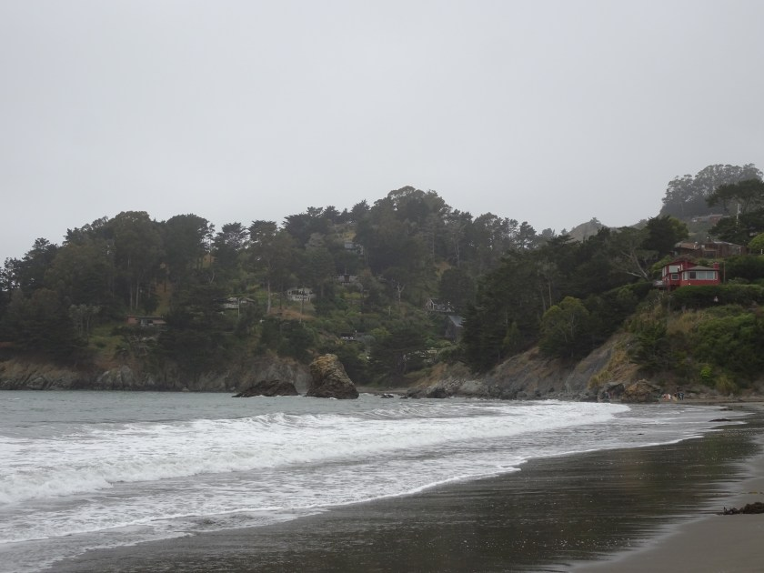 Sausalito california Muir beach san francisco (2)