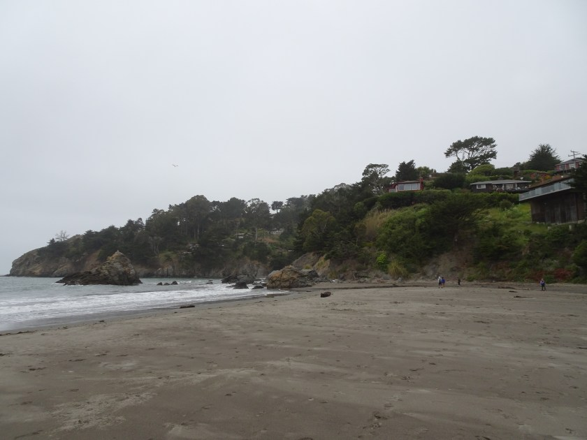 Sausalito california Muir beach san francisco (8)