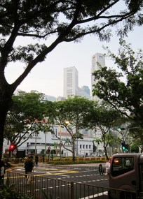 Raintrees hide the view of parliament house from the crossroad junction.. beyond the parliament house are the beautiful skyscrapers of Singapore.