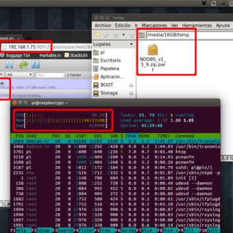 rendimiento raspberry pi como servidor torrents