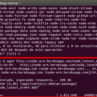 raspberry-pi-node-js-05
