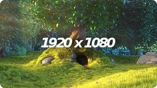 dl_1080p