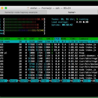 HypriotOS htop-3-webserver-haproxy