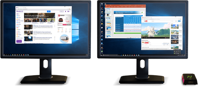 section_dual_monitor