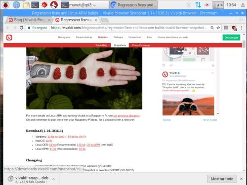 download vivaldi raspberry pi