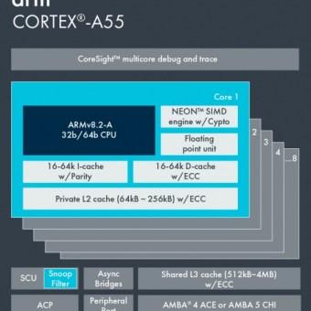 cortex-a55