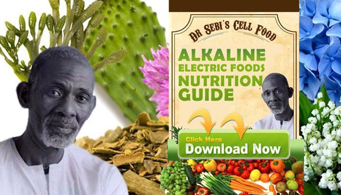 dr-sebi-alfredo-bowman-download-nutrition-guide-rastafari-tv