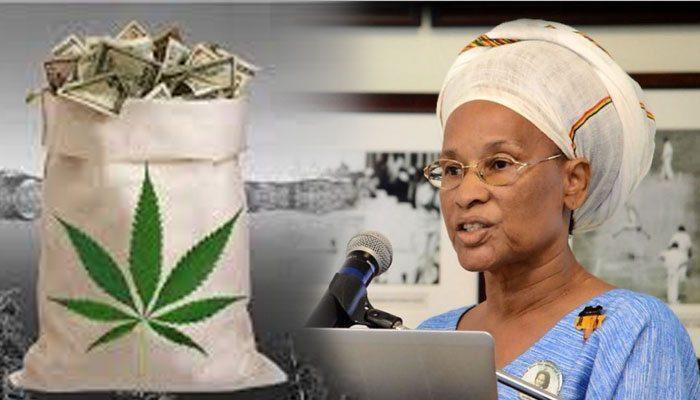 Barbados Pay Us Back! Rastafarians demand justice at marijuana ...