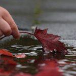 Zaboravi pogreške koje si u životu napravio, ali zapamti lekcije koje su ti one ostavile!