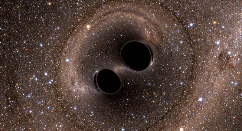 black hole gravitational wave