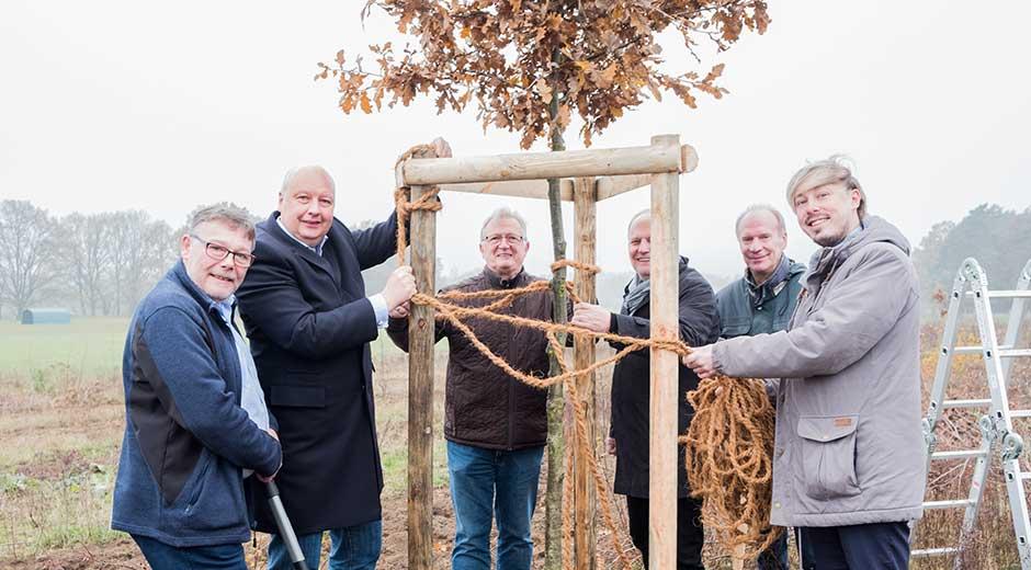 FDP sponsert Ersatz von vernichteten Jungbäumen