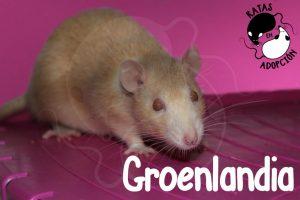 Groenlandia1-1024x683