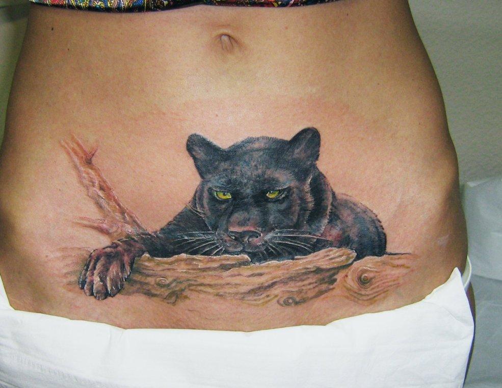 татуировки для девушек на животе на шраме