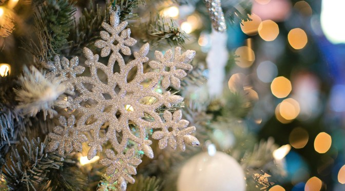"""<span class=""""entry-title-primary"""">Understanding the meaning and origin of Yule</span> <span class=""""entry-subtitle"""">Celebrating the season by looking into familiar symbols</span>"""