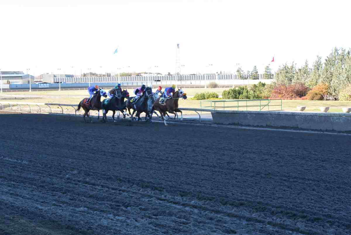 Northlands Horse Racing Schedule
