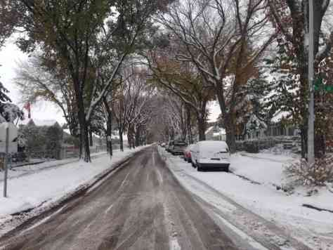 The city plows residential roads once there's over five centimetres of snowpack.| Karen Mykietka