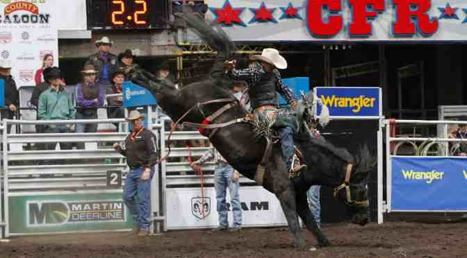 """<span class=""""entry-title-primary"""">Embracing agriculture with Northlands' events</span> <span class=""""entry-subtitle"""">Celebrating another year of hosting Canadian Finals Rodeo</span>"""