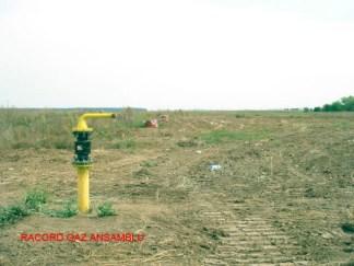 Tunari 3 Racord Gaze - Copy