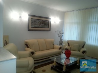 Vila Parcul Carol - living room