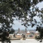 Ciampini Cafe du Jardin City View