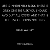 Life is inherently risky. There is only one big risk you should avoid at all costs, and that is the risk of doing nothing. - Denis Waitley-