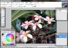 Paint.NETで画像を開いたところ