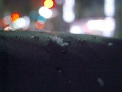 雪です(2009/03/03撮影)