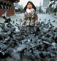 Whenbirdsattack2