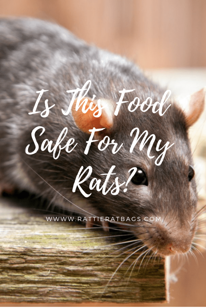 Is This Food Safe For My Rats - www.rattieratbags.com