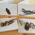 Flying insect art greeting cards