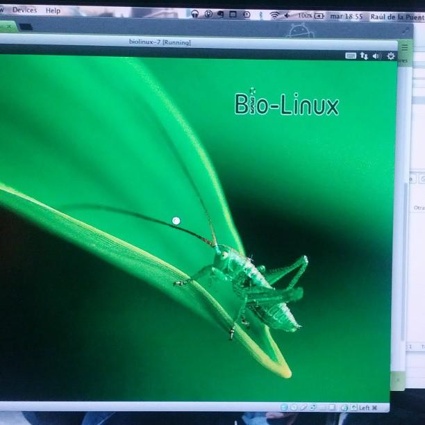 Probando la nueva versión de #Biolinux