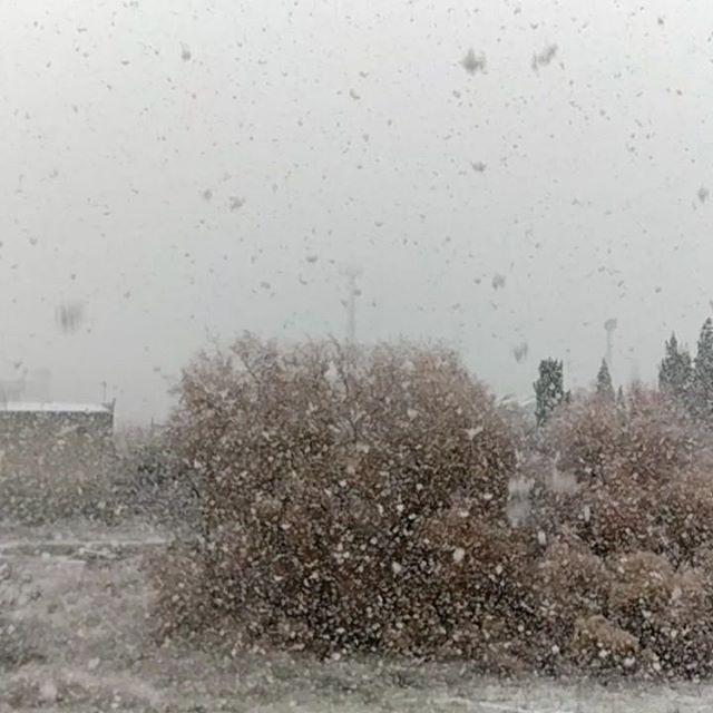 ¡Ahora sí! ¡FELIZ NAVIDAD! #Granada #Nieve #Snow