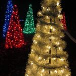 Blue, Green, Red, and Gold lights decorating trees at Garden Glow at the Missouri Botanical Garden