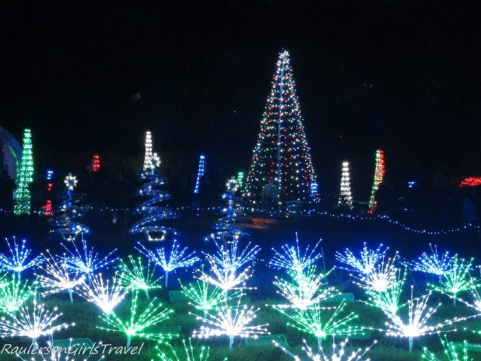 Holiday lights as trees and bushes at Garden Glow at Missouri Botanical Gardens