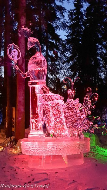 Peakcock ice sculpture lit in pink